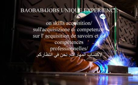 baobab unique experience on skills acquisition